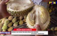 Menikmati Buah Durian Yang Manis Hingga Manis Berlemak
